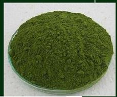 Moringa Leaf and Powder